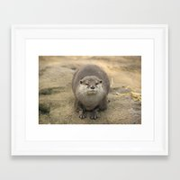 otter Framed Art Prints featuring Otter   by Rob Hawkins Photography