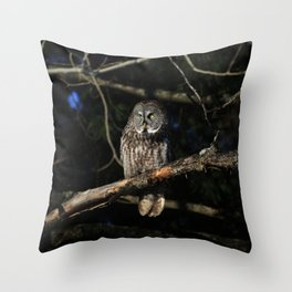Darkness I defy thee Throw Pillow
