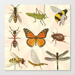 Insects on Parade Canvas Print
