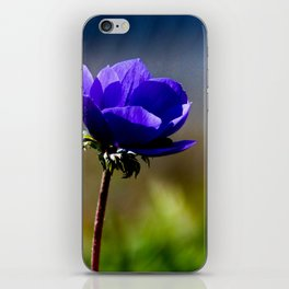 The blue Flower iPhone Skin