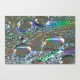 Sparkle and Shine  Canvas Print