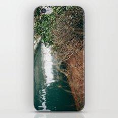 Branch Bokeh iPhone & iPod Skin