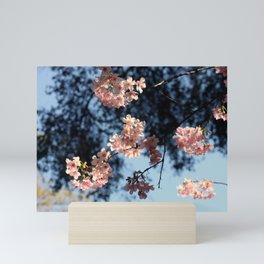 Spring time Mini Art Print