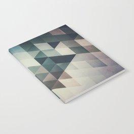 lyrnynngg cyyrrvve Notebook