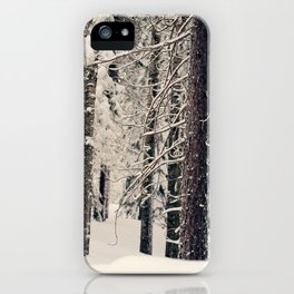 Winter Woods 1 iPhone Case