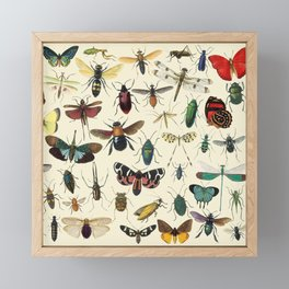 Lovely Butterfly Framed Mini Art Print