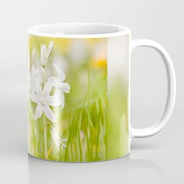 White Ornithogalum nutans pretty bloom Coffee Mug