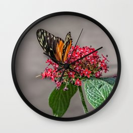 Tiger Longwing Wall Clock