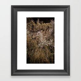 Fall Textures 2  Framed Art Print