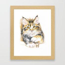 Maine Coon Kitty Framed Art Print