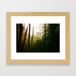 Vanity series [2] Framed Art Print