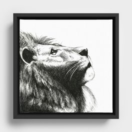African cat Framed Canvas