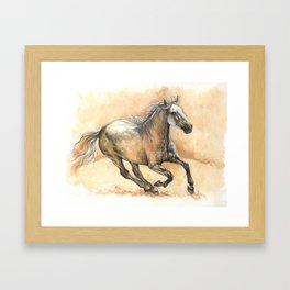 Running lusitano Framed Art Print