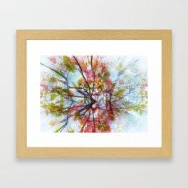 Creative roots Framed Art Print