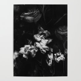 Moody Blooms Poster