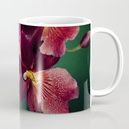 The mystery of orchid(13) Coffee Mug