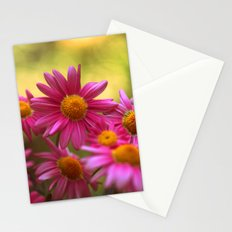 Anthemis 2632 Stationery Cards