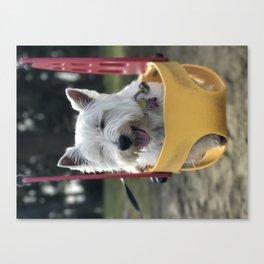 Westie West Highland Terrier in swing Canvas Print