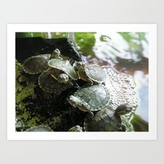 I LIKE TURTLES. Art Print