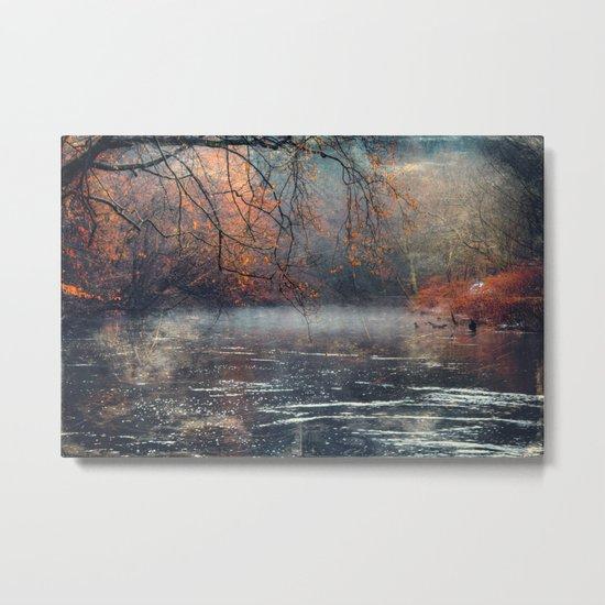 between fall & winter Metal Print