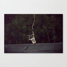 splish splash Canvas Print