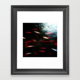 Abstract goldfish_03 Framed Art Print