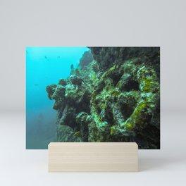Liberty Shipwreck Bali Mini Art Print