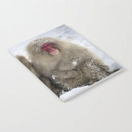 two snow monkeys Notebook