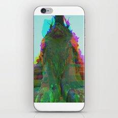 Multiplicitous extrapolatable characterization. 39 iPhone & iPod Skin