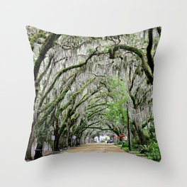 The Fountain of Youth 450th Year Celebration Throw Pillow