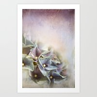 hydrangea Art Prints featuring HYDRANGEA by VIAINA