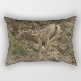Baby Mountain Goat in Yellowstone National Park, WY Rectangular Pillow