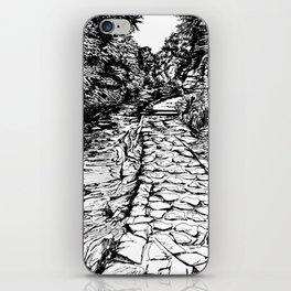Watkins Glen, NY - Pen and Ink iPhone Skin