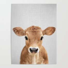 Calf - Colorful Poster