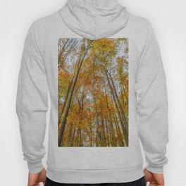 Reach High and Touch the Sky Hoody