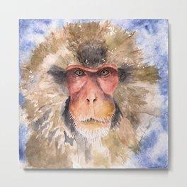 Snow Monkey Metal Print