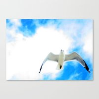 miami Canvas Prints featuring Miami by Amee Cherie Piek