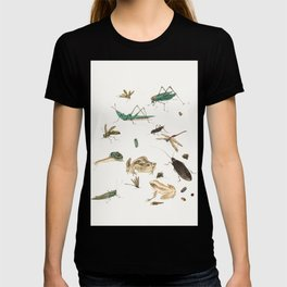 Insects, frogs and a snail T-shirt