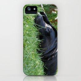 buller iPhone Case