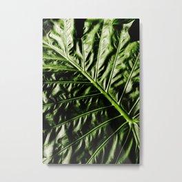 Rib And Veins Metal Print