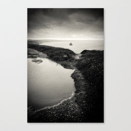 puddle and pond Canvas Print