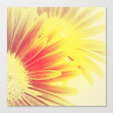 FLOWER 024 Canvas Print