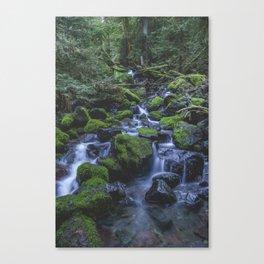 Copper Creek Canvas Print