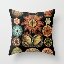 Sea Life Illustrations by Ernst Haeckel, 1904 Throw Pillow