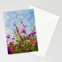 Cosmea 212 Stationery Cards