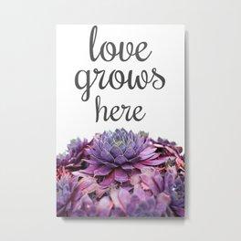 Love Grows Here Succulent Metal Print