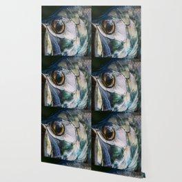 Tarpon Eye Wallpaper