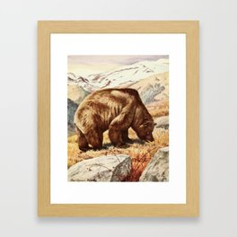 Fuertes,Louis Agassiz1874-1927)-Burgess Animal Book forChildren 1920 (Brown Bear) Framed Art Print