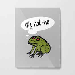 It's Not Me - II Metal Print