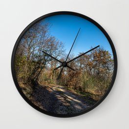 Autumnal path through the woods Wall Clock